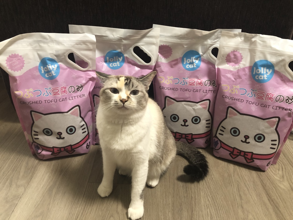 @_meowtales is back with another cat litter review! This time featuring Jolly Cat