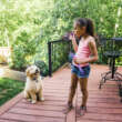 3 Easy and Effective Ways to Make a Dog-Friendly Backyard